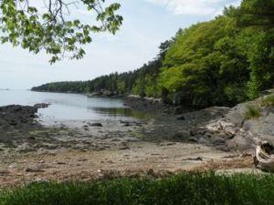 Shore at the Hopkins Property