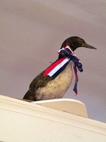 stuffed loon that has presided over the town hall since the turn of the 20th century