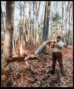 Picture of a man holding the tree that fell on Paul