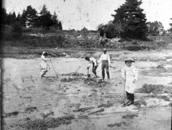 family clamming at squam creek, early 1900's